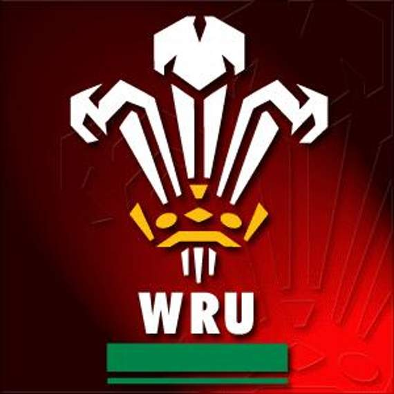 Wales ring changes for Japan test