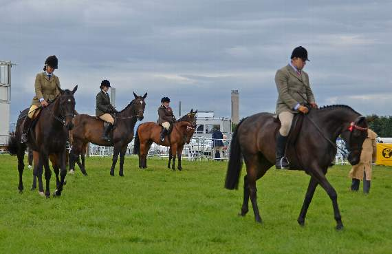 Vale of Glamorgan Show results (Equine classes).