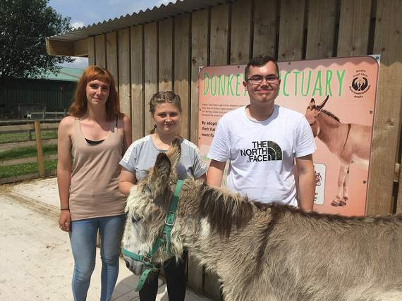 Donkey sanctuary gets help from students